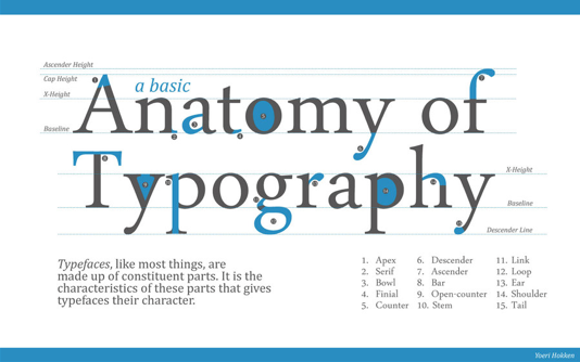 Image Source 6 Common Typography Terms To Know Serif Vs Sans